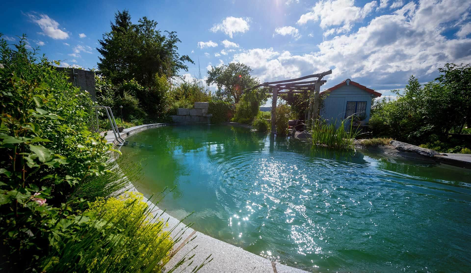 Schwimmteich in Niedereschach